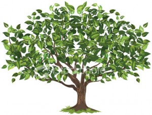 ist2_5118468-green-tree-illustration