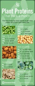Plant proteins are satisfying, offer diverse choices, and are equal to animal proteins.