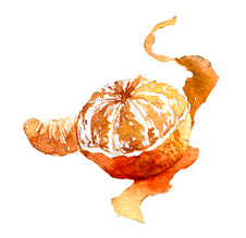 A watercolor depicting a partially unpeeled orange